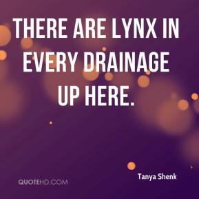 Tanya Shenk  - There are lynx in every drainage up here.