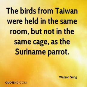 Watson Sung  - The birds from Taiwan were held in the same room, but not in the same cage, as the Suriname parrot.