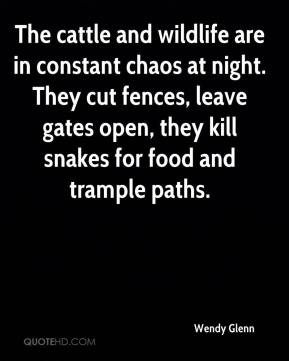 Wendy Glenn  - The cattle and wildlife are in constant chaos at night. They cut fences, leave gates open, they kill snakes for food and trample paths.