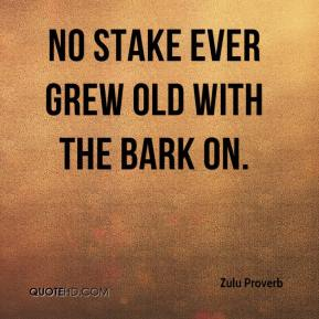 Zulu Proverb  - No stake ever grew old with the bark on.