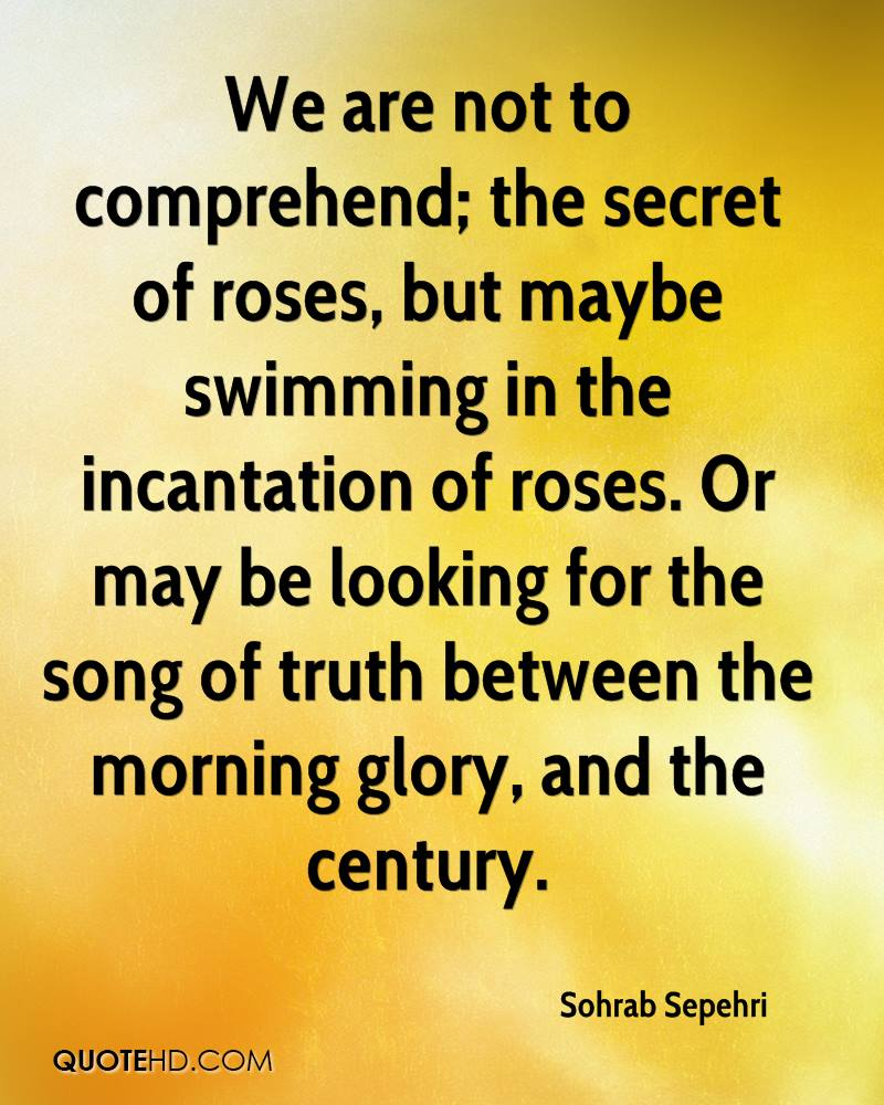 We are not to comprehend; the secret of roses, but maybe swimming in the incantation of roses. Or may be looking for the song of truth between the morning glory, and the century.