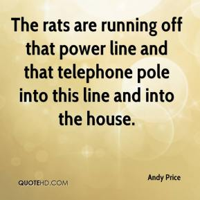 Andy Price - The rats are running off that power line and that telephone pole into this line and into the house.