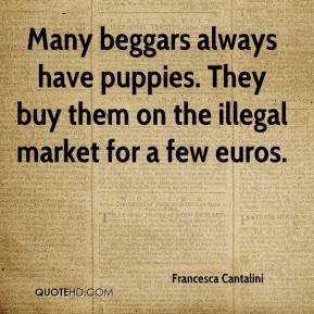 Francesca Cantalini - Many beggars always have puppies. They buy them on the illegal market for a few euros.
