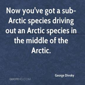 George Divoky - Now you've got a sub-Arctic species driving out an Arctic species in the middle of the Arctic.