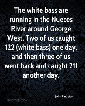 John Findeisen  - The white bass are running in the Nueces River around George West. Two of us caught 122 (white bass) one day, and then three of us went back and caught 211 another day.