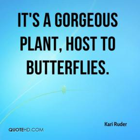 Kari Ruder  - It's a gorgeous plant, host to butterflies.