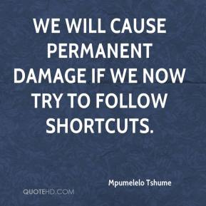 Mpumelelo Tshume  - We will cause permanent damage if we now try to follow shortcuts.