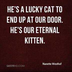 Nanette Westhof  - He's a lucky cat to end up at our door. He's our eternal kitten.