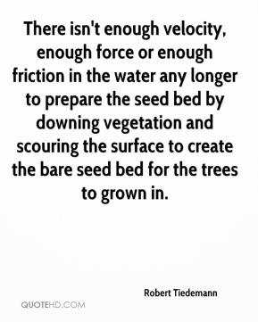 Robert Tiedemann  - There isn't enough velocity, enough force or enough friction in the water any longer to prepare the seed bed by downing vegetation and scouring the surface to create the bare seed bed for the trees to grown in.