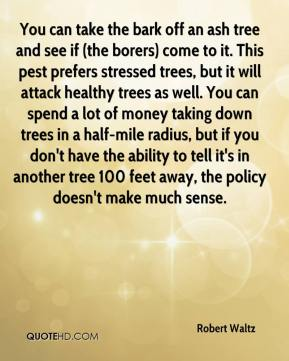 Robert Waltz  - You can take the bark off an ash tree and see if (the borers) come to it. This pest prefers stressed trees, but it will attack healthy trees as well. You can spend a lot of money taking down trees in a half-mile radius, but if you don't have the ability to tell it's in another tree 100 feet away, the policy doesn't make much sense.