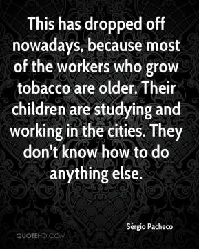 Sérgio Pacheco  - This has dropped off nowadays, because most of the workers who grow tobacco are older. Their children are studying and working in the cities. They don't know how to do anything else.