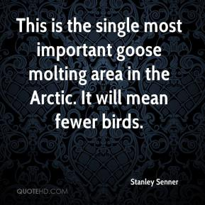 Stanley Senner  - This is the single most important goose molting area in the Arctic. It will mean fewer birds.