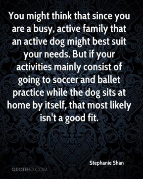 Stephanie Shan  - You might think that since you are a busy, active family that an active dog might best suit your needs. But if your activities mainly consist of going to soccer and ballet practice while the dog sits at home by itself, that most likely isn't a good fit.