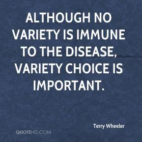 Terry Wheeler  - Although no variety is immune to the disease, variety choice is important.
