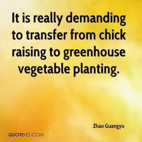 Zhao Guangyu  - It is really demanding to transfer from chick raising to greenhouse vegetable planting.