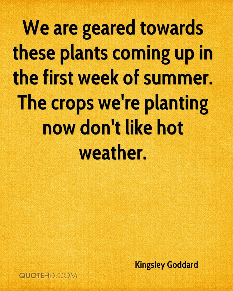 We are geared towards these plants coming up in the first week of summer. The crops we're planting now don't like hot weather.