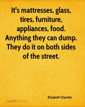 Elizabeth Charette - It's mattresses, glass, tires, furniture, appliances, food. Anything they can dump. They do it on both sides of the street.