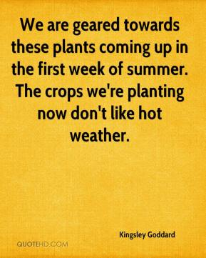 Kingsley Goddard  - We are geared towards these plants coming up in the first week of summer. The crops we're planting now don't like hot weather.