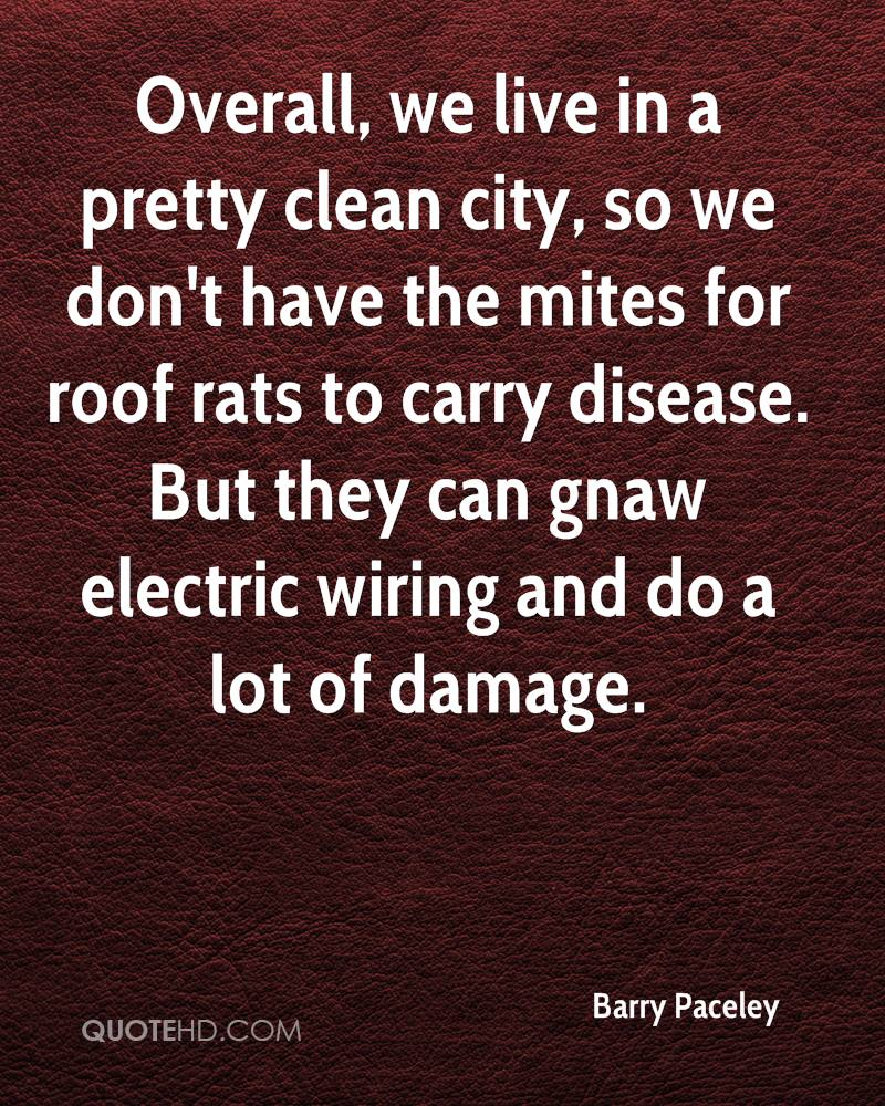 Overall, we live in a pretty clean city, so we don't have the mites for roof rats to carry disease. But they can gnaw electric wiring and do a lot of damage.