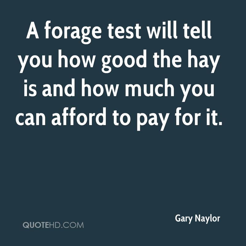 A forage test will tell you how good the hay is and how much you can afford to pay for it.