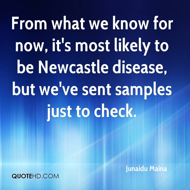 From what we know for now, it's most likely to be Newcastle disease, but we've sent samples just to check.