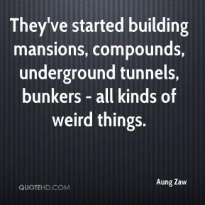 Aung Zaw - They've started building mansions, compounds, underground tunnels, bunkers - all kinds of weird things.