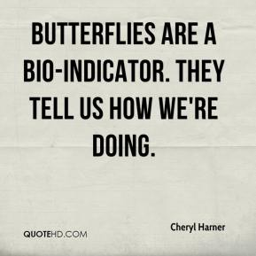 Cheryl Harner - Butterflies are a bio-indicator. They tell us how we're doing.