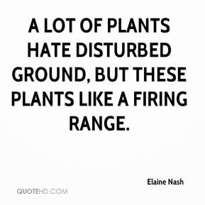 Elaine Nash - A lot of plants hate disturbed ground, but these plants like a firing range.
