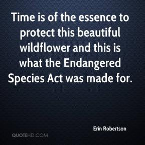Erin Robertson - Time is of the essence to protect this beautiful wildflower and this is what the Endangered Species Act was made for.
