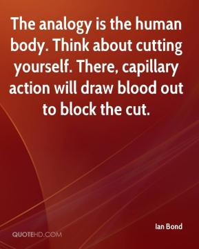 Ian Bond - The analogy is the human body. Think about cutting yourself. There, capillary action will draw blood out to block the cut.
