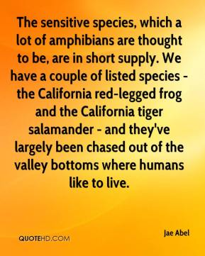 The sensitive species, which a lot of amphibians are thought to be, are in short supply. We have a couple of listed species - the California red-legged frog and the California tiger salamander - and they've largely been chased out of the valley bottoms where humans like to live.