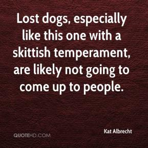 Kat Albrecht  - Lost dogs, especially like this one with a skittish temperament, are likely not going to come up to people.