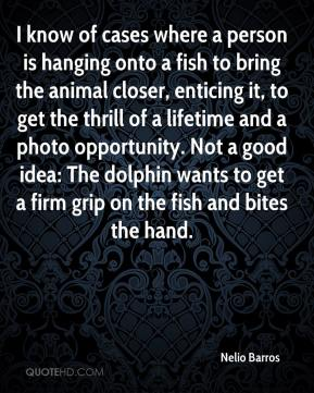Nelio Barros  - I know of cases where a person is hanging onto a fish to bring the animal closer, enticing it, to get the thrill of a lifetime and a photo opportunity. Not a good idea: The dolphin wants to get a firm grip on the fish and bites the hand.