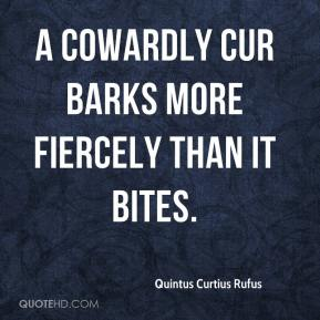 Quintus Curtius Rufus  - A cowardly cur barks more fiercely than it bites.