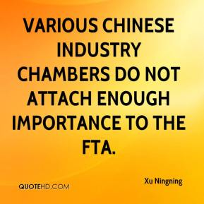 Xu Ningning  - Various Chinese industry chambers do not attach enough importance to the FTA.
