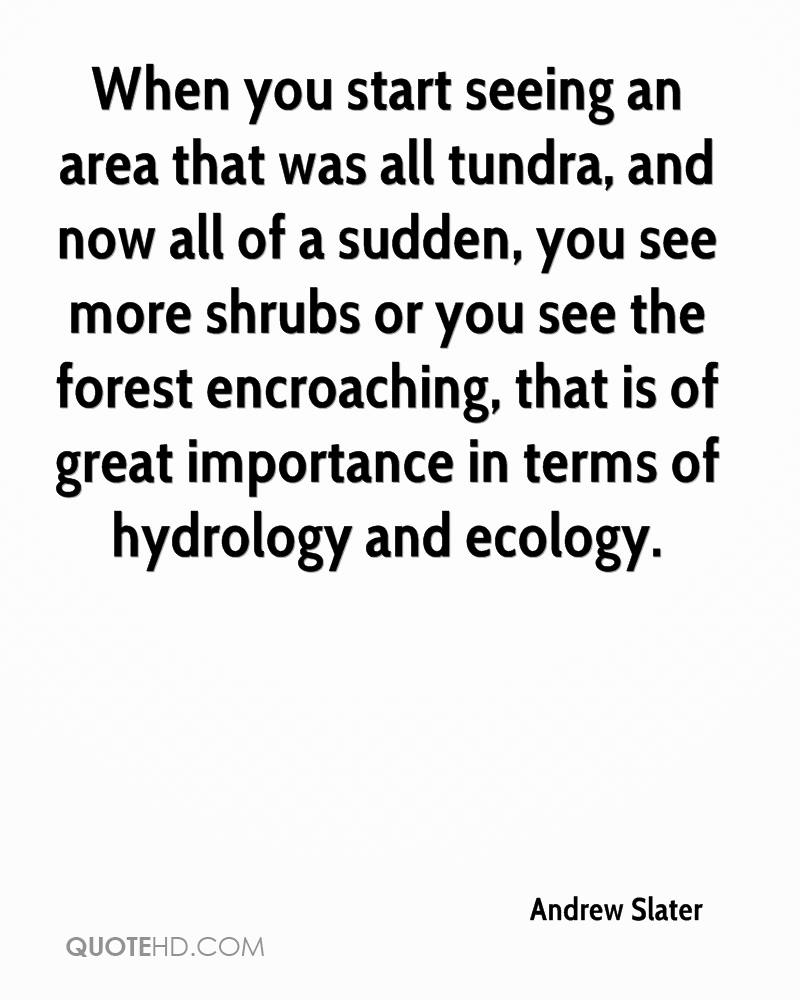 When you start seeing an area that was all tundra, and now all of a sudden, you see more shrubs or you see the forest encroaching, that is of great importance in terms of hydrology and ecology.