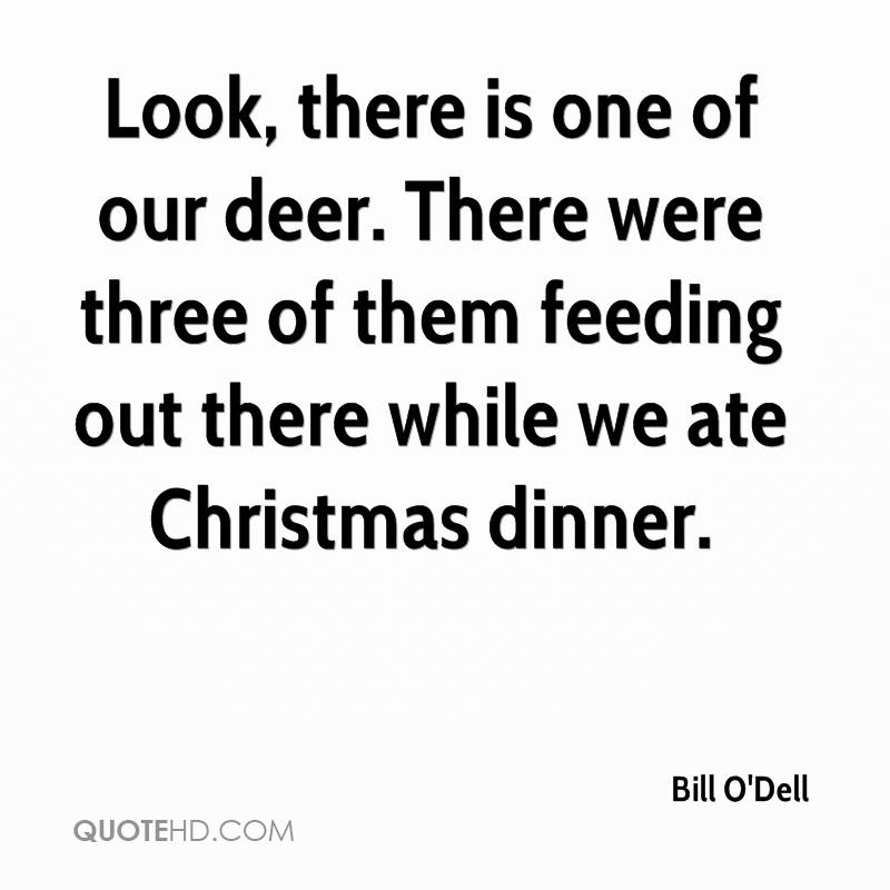 Look, there is one of our deer. There were three of them feeding out there while we ate Christmas dinner.