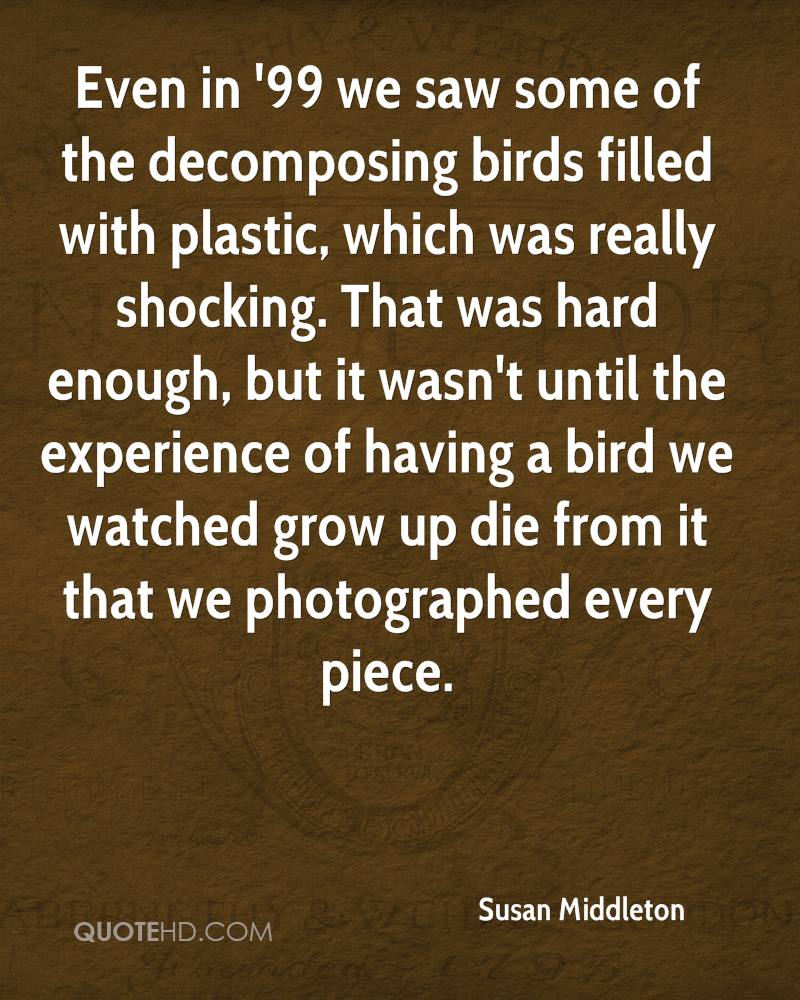Even in '99 we saw some of the decomposing birds filled with plastic, which was really shocking. That was hard enough, but it wasn't until the experience of having a bird we watched grow up die from it that we photographed every piece.