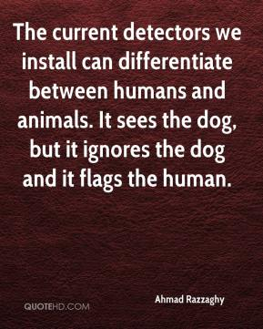 Ahmad Razzaghy - The current detectors we install can differentiate between humans and animals. It sees the dog, but it ignores the dog and it flags the human.