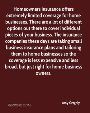 Amy Gergely - Homeowners insurance offers extremely limited coverage for home businesses. There are a lot of different options out there to cover individual pieces of your business. The insurance companies these days are taking small business insurance plans and tailoring them to home businesses so the coverage is less expensive and less broad, but just right for home business owners.