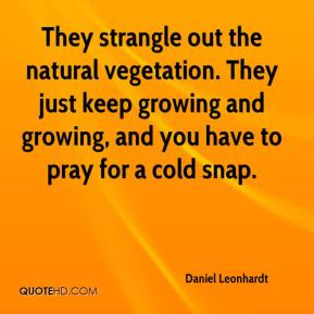 Daniel Leonhardt - They strangle out the natural vegetation. They just keep growing and growing, and you have to pray for a cold snap.