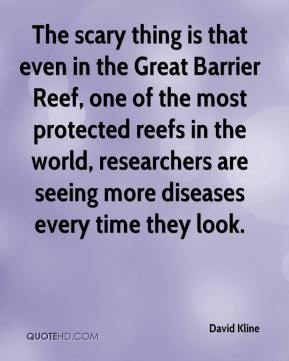 The scary thing is that even in the Great Barrier Reef, one of the most protected reefs in the world, researchers are seeing more diseases every time they look.