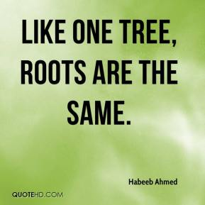 Habeeb Ahmed - Like one tree, roots are the same.