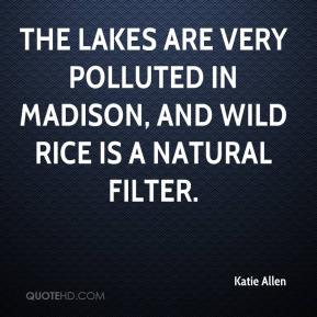 Katie Allen  - The lakes are very polluted in Madison, and wild rice is a natural filter.