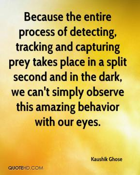 Kaushik Ghose  - Because the entire process of detecting, tracking and capturing prey takes place in a split second and in the dark, we can't simply observe this amazing behavior with our eyes.