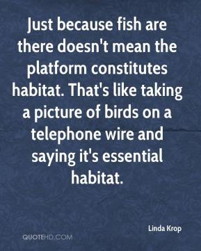 Linda Krop  - Just because fish are there doesn't mean the platform constitutes habitat. That's like taking a picture of birds on a telephone wire and saying it's essential habitat.