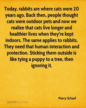 Marcy Schaaf  - Today, rabbits are where cats were 20 years ago. Back then, people thought cats were outdoor pets and now we realize that cats live longer and healthier lives when they're kept indoors. The same applies to rabbits. They need that human interaction and protection. Sticking them outside is like tying a puppy to a tree, then ignoring it.