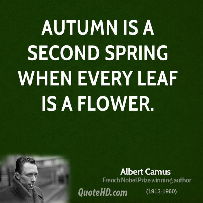 Albert Camus Nature Quotes  QuoteHD