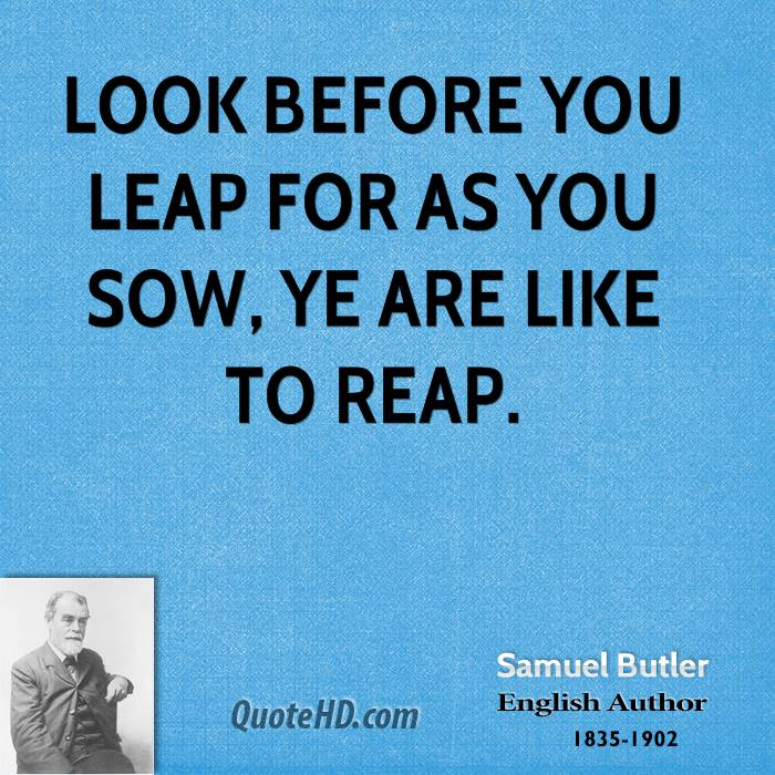 look before you leap 2 essay Look before you leap te old and oft-repeated saying is 'look before you leap' and 'think before you speak' the story of the dog and his unwise master is well known.