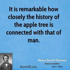 It is remarkable how closely the history of the apple tree is connected with that of man.